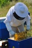 beekeeper Fotografia Stock Libera da Diritti