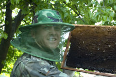 Beekeeper. Keeps frame with honeycomb. preparation to pump honey Royalty Free Stock Image