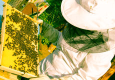 beekeeper Lizenzfreie Stockfotos