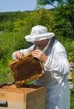 Beekeeper 58 Royalty Free Stock Image