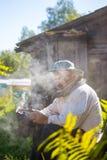Beekeeper in action Stock Image