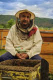 Beekeeper on the apiary. Beekeeper with the honey frame on the apiary Stock Photography