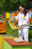 Beekeeper and beehives royalty free stock photo