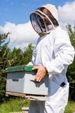 Beekeeper Carrying Honeycomb Box Royalty Free Stock Photo