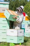 Beekeeper Carrying Honeycomb Crate At Apiary Royalty Free Stock Photos