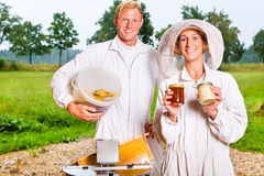 Beekeeper filling honey with extractor in glass Royalty Free Stock Image