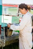 Beekeeper Fueling Smoker For som tar bort honung Arkivbild