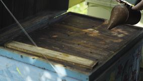 Beekeeper fumigate bee hive with bee smoker. The apiculturist calm the insects before taking the honeycombs from beehive. The growing and caring of bees for stock video