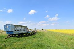 Beekeeper and his mobile beehives. In oilseed farmland during spring stock photography