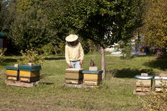 Beekeeper with hive Royalty Free Stock Photos