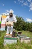 Beekeeper Holding Honeycomb Frame On Farm. Beekeeper wearing protective clothing holding honeycomb frame on farm stock photo