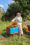 Beekeeper with honeycomb in the apiary stock photos