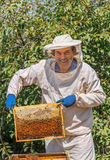 Beekeeper holding a honeycomb Royalty Free Stock Images