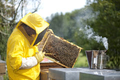 Beekeeper With Honeycomb Royalty Free Stock Photography