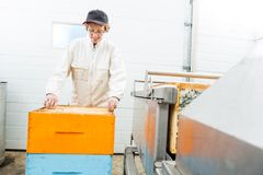 Beekeeper With Honeycomb Crates Working In Factory Stock Photography