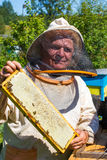 Beekeeper with honeycombs in hands Stock Image