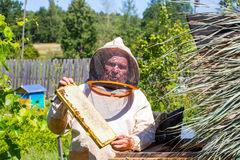 Beekeeper with honeycombs in hands Royalty Free Stock Photo