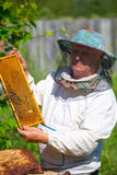 Beekeeper with honeycombs in hands Royalty Free Stock Photography