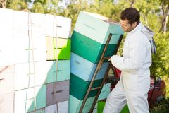 Beekeeper Loading Stacked Honeycomb Crates stock images