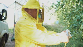 Beekeeper man cut off wax on honeycombs preparing to harvesting honye in apiary. On summer sunny day stock video footage