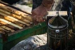 Beekeeper med bikupan Royaltyfria Bilder