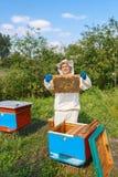 Beekeeper med honungskakan Arkivbilder