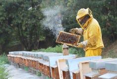 Beekeeper med honungskakan i hand Royaltyfri Bild
