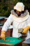 Beekeeper med rökaren Royaltyfri Foto