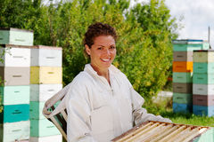 Beekeeper moving beehives boxes stock image