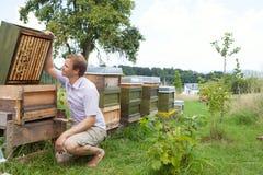 Beekeeper och bikupa Fotografering för Bildbyråer