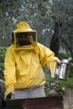 Beekeeper opened beehive Stock Photo