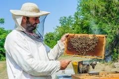 Beekeeper på bikupan Royaltyfri Foto