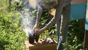 Beekeeper processes beehive chimney. Slow motion. stock video