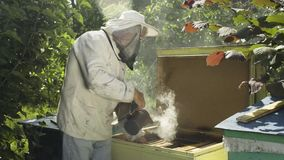 Beekeeper in protective veil and hat fumigate bee hive with hive smoker. Beekeeper fumigate bee hive with bee smoker. The apiculturist calm the insects before stock video