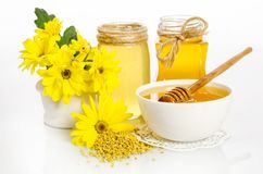 Beekeeper`s still life with yellow flowers Royalty Free Stock Photos