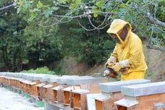 Beekeeper with smoker Stock Image