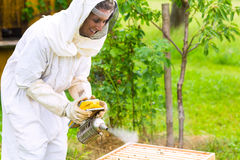 Beekeeper with smoker controlling beeyard. And bees Stock Images