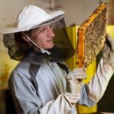 Beekeeper som fungerar i en apiary Royaltyfri Fotografi