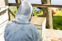 Beekeeper som kontrollerar på hans bikupa Arkivbild