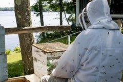 Beekeeper som kontrollerar på hans bikupa Royaltyfri Bild