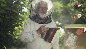 Beekeeper with steaming bee smoker in the bee-garden. Portrait of smiling beekeeper with bee smoker in hand. The man in protective veil and hait is looking at stock video footage