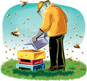 Beekeeper takes care of his hive. Beekeeper takes care of his hive, surrounded by worker bees Stock Photo