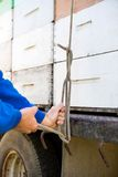 Beekeeper Tying Stacked Honeycomb Crates On Truck Stock Images