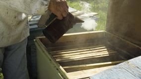 Beekeeper using bee smoker for fumigation beehive, slow motion. Beekeeper fumigate bee hive with bee smoker. The apiculturist calm the insects before taking the stock video