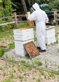 Beekeeper Royalty Free Stock Photos