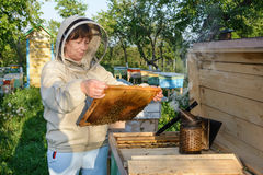 Beekeeper woman controlling beehive and comb frame. Apiculture. Royalty Free Stock Photography