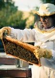 Beekeeper Stock Photos