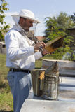 Beekeeper at work. Beekeeper inspects honey bee colony Stock Photography
