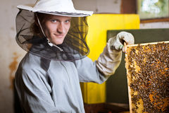 Beekeeper working in an apiary Royalty Free Stock Photos