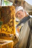 Beekeeper working in an apiary Stock Photo